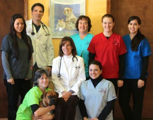 Queen City Animal Hospital Staff